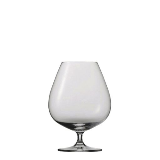 Schott Zwiesel Tritan Bar Special Cognac XXL (45)